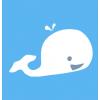 白鲸加速器