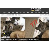 NOWnews-今日新闻